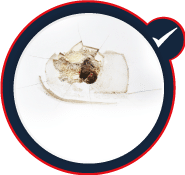 MAGICEZY-réparation-facile-des-trous